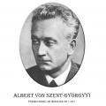 Año 1937-Albert Von Szent-Györgyyi