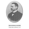 Año 1902-Sir Ronald Ross