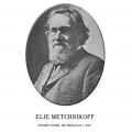 Año 1908-Elie Metchnikoff