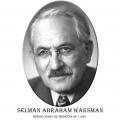 Año 1952-Selman Abraham Waksman
