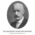 Año 1929-Sir Frederick G. Hopkins