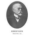 Año 1.905-Robert Koch