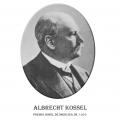 Año 1910-Albrecht Kossel