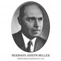 Año 1946-Hermann Joseph Muller