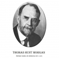 Año 1933-Thomas Hunt Morgan