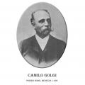 Año 1.906-Camilo Golgi