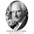 Año 1962-Francis Harry C.Crick